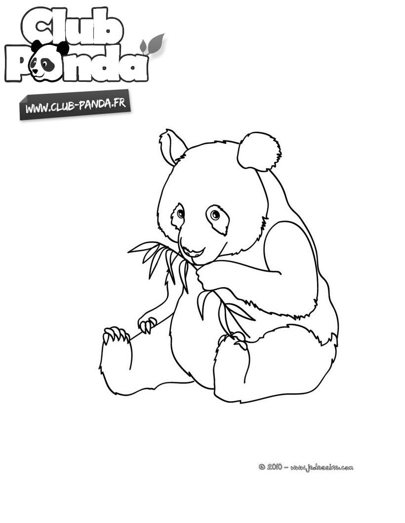 7 dessins de coloriage panda a imprimer imprimer - Coloriage panda ...