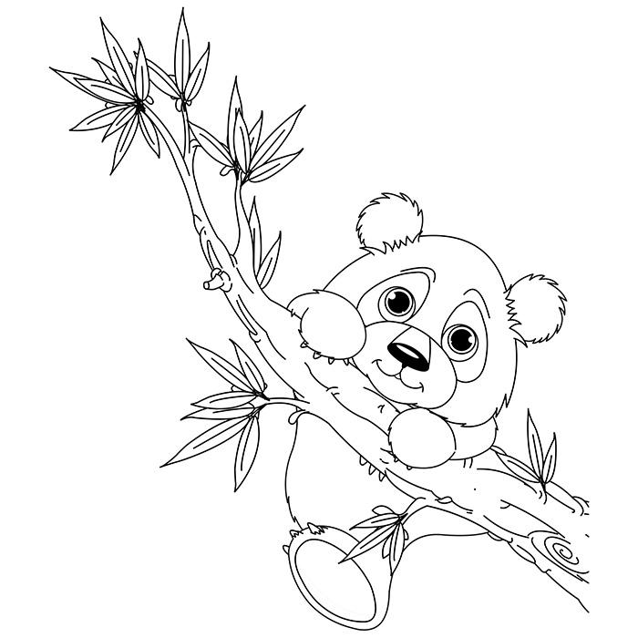 12 dessins de coloriage panda g ant imprimer - Coloriage panda roux mandala ...