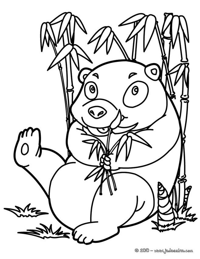 coloriage à dessiner de panda géant