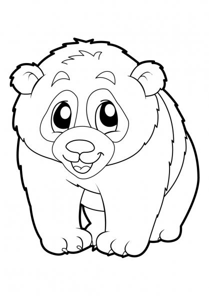Dessin à Colorier Panda Roux