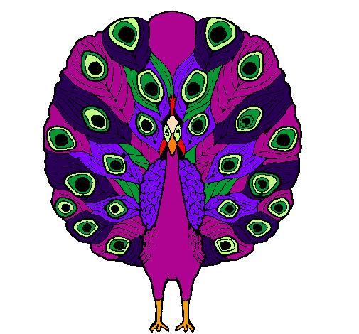 coloriage à dessiner paon