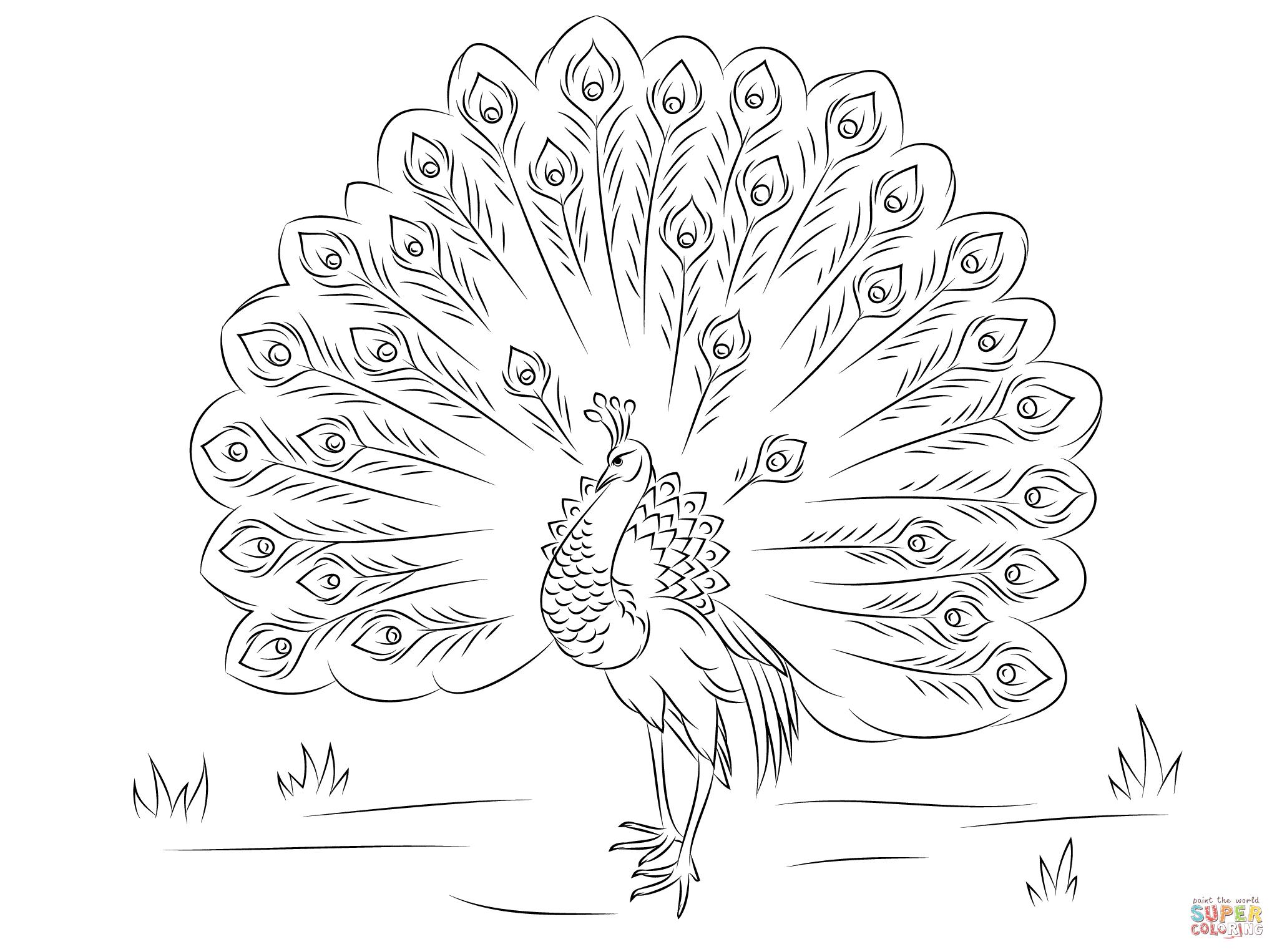 joe le corbeau