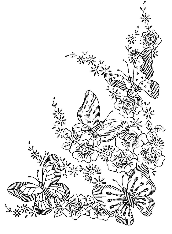 Image Coloriage Papillon Adulte