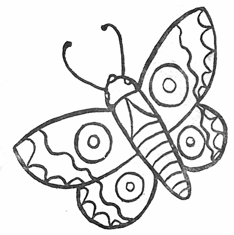 96 dessins de coloriage papillon belle dame imprimer - Coloriage papillon imprimer ...