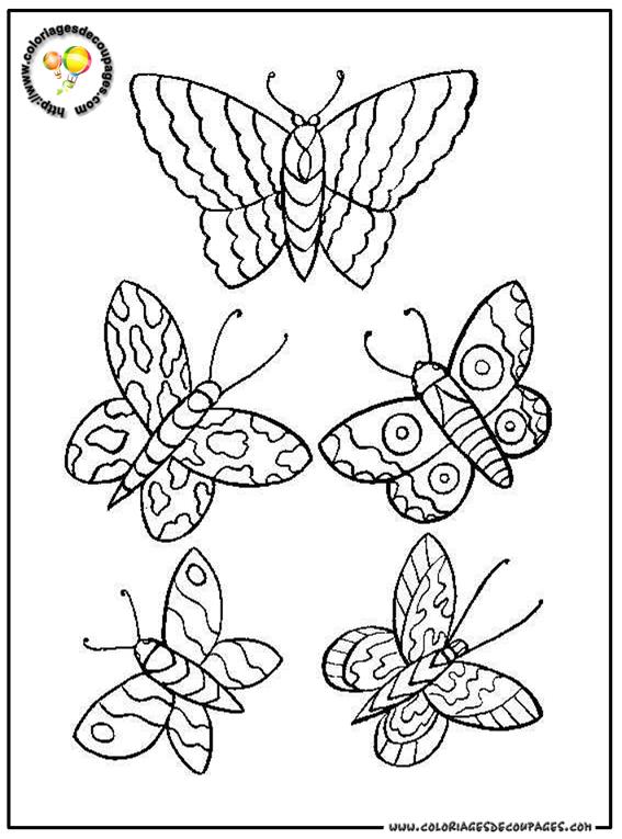 98 dessins de coloriage papillon facile imprimer - Dessin de petit papillon ...