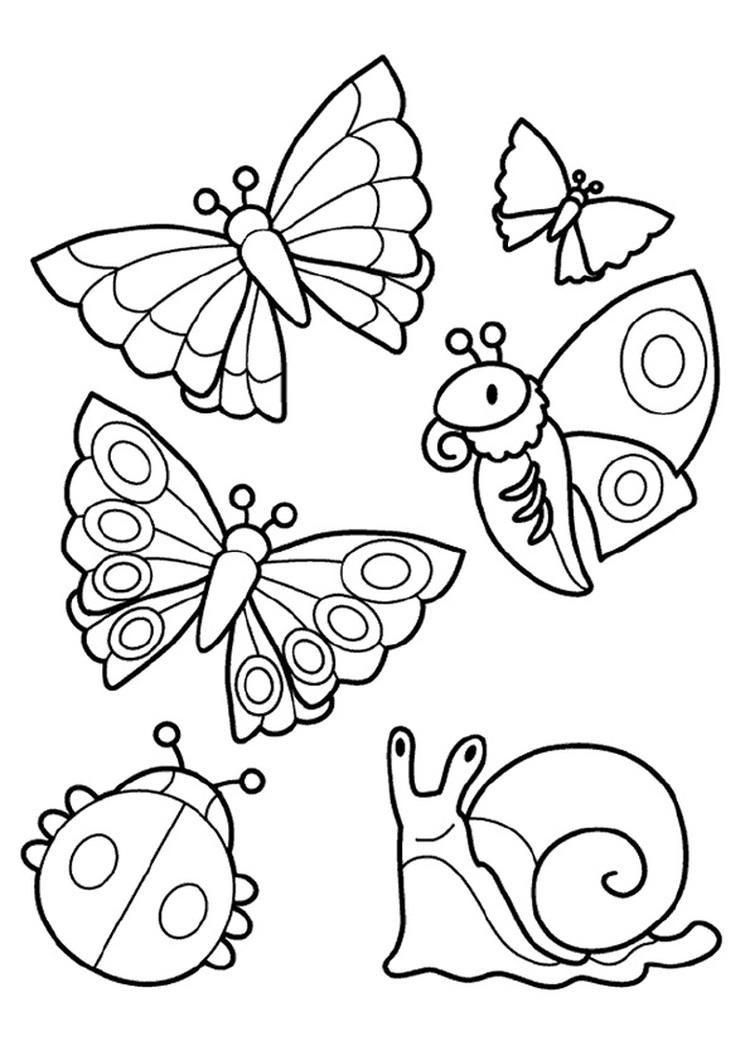 94 dessins de coloriage Papillon Hugo L'escargot à imprimer