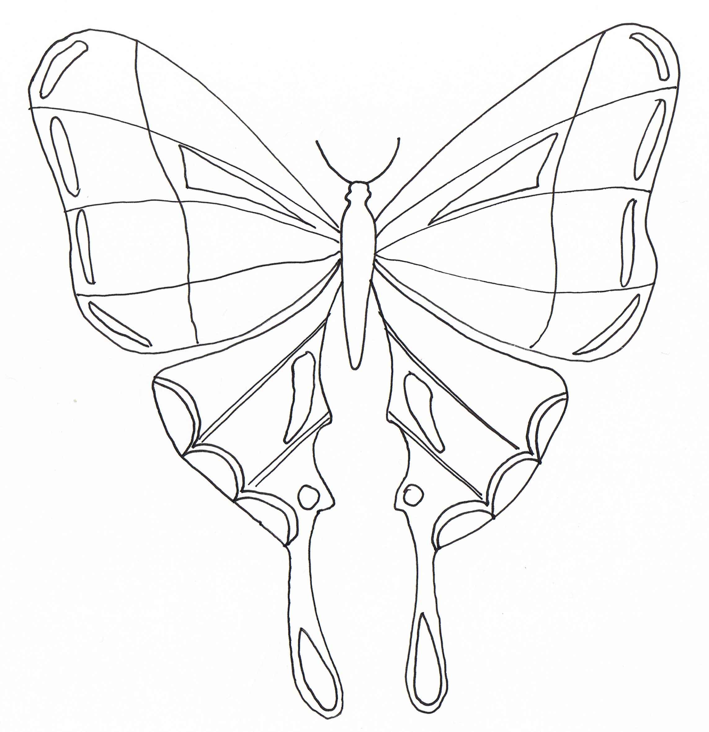 dessin à colorier numéroté papillon