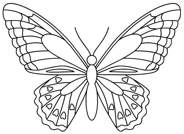 Coloriage de papillon a imprimer gratuit - Papillon imprimer ...