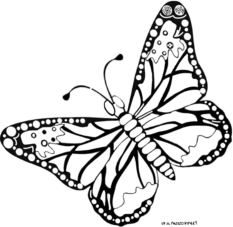 Dessin de papillon sur une fleur - Papillon maternelle ...
