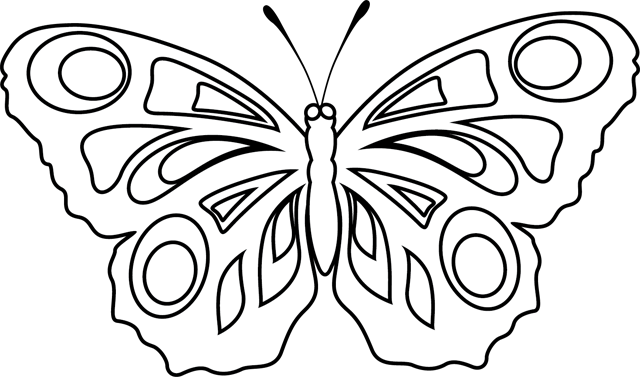 dessin à colorier papillon simple