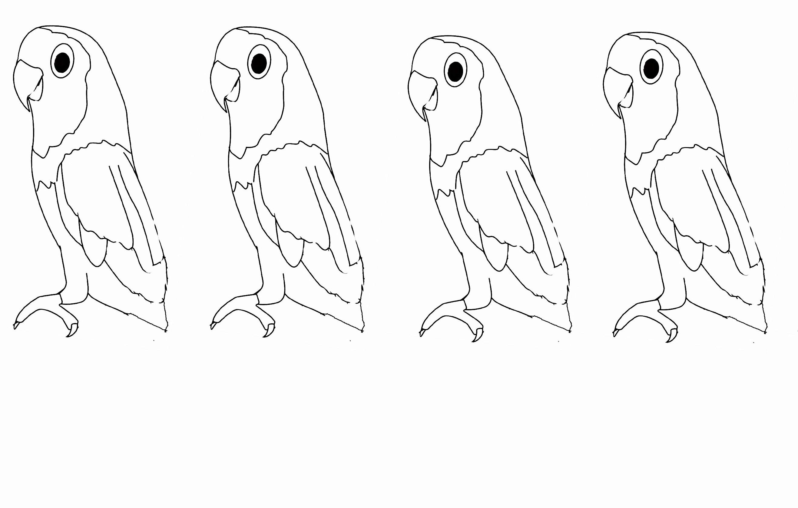 dessin  colorier perroquet gratuit