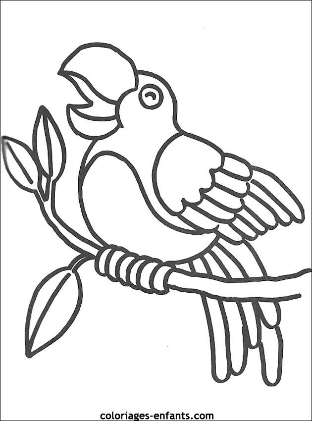 Dessin de perroquet qui vole - Perroquet en dessin ...