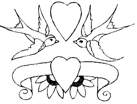 dessin perruche en ligne
