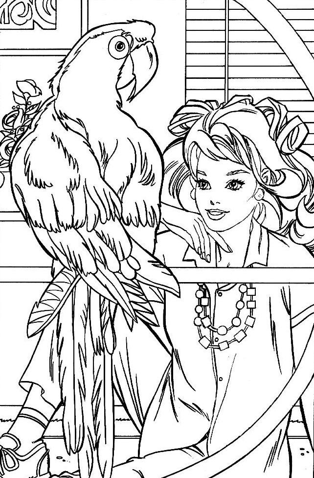 dessin perruche a imprimer