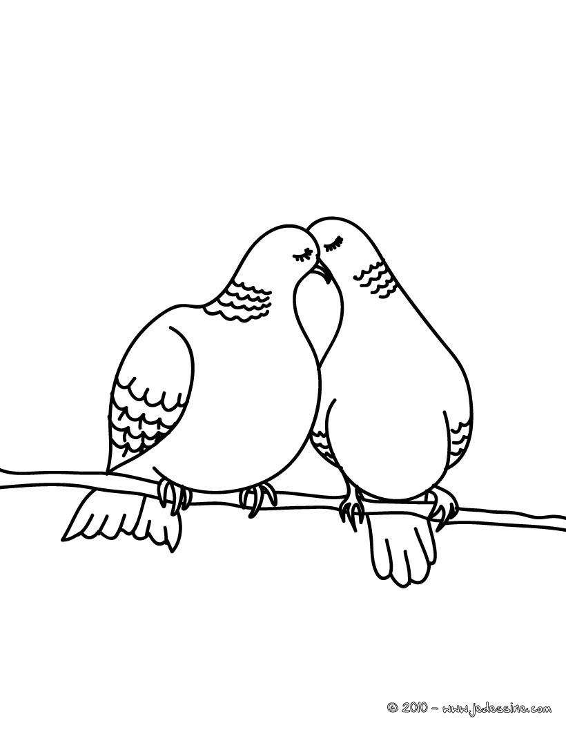 dessin � colorier de pigeon