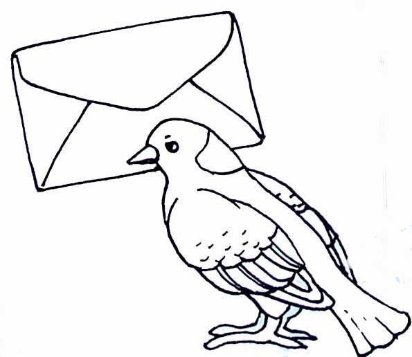 dessin vaillant pigeon de combat