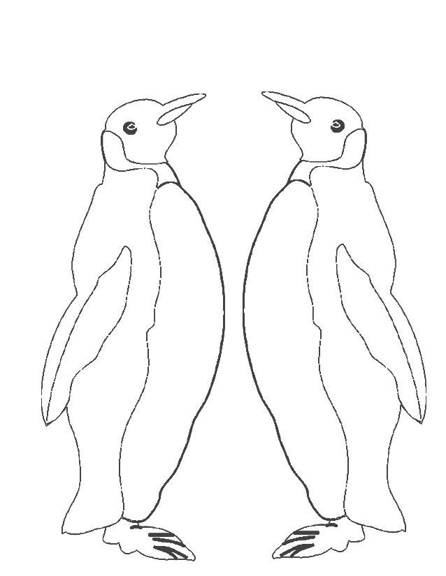 Dessin imprimer pingouins madagascar - Coloriage pinguin ...