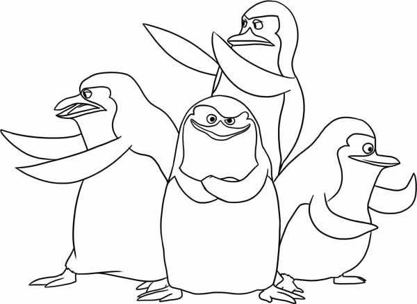 coloriage pingouin tfou