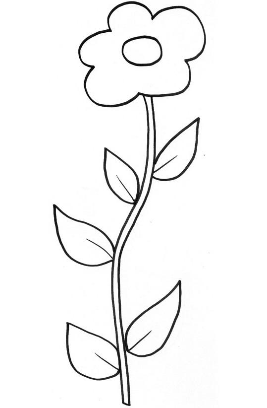 Assez 80 dessins de coloriage Plante Grimpante à imprimer UJ08