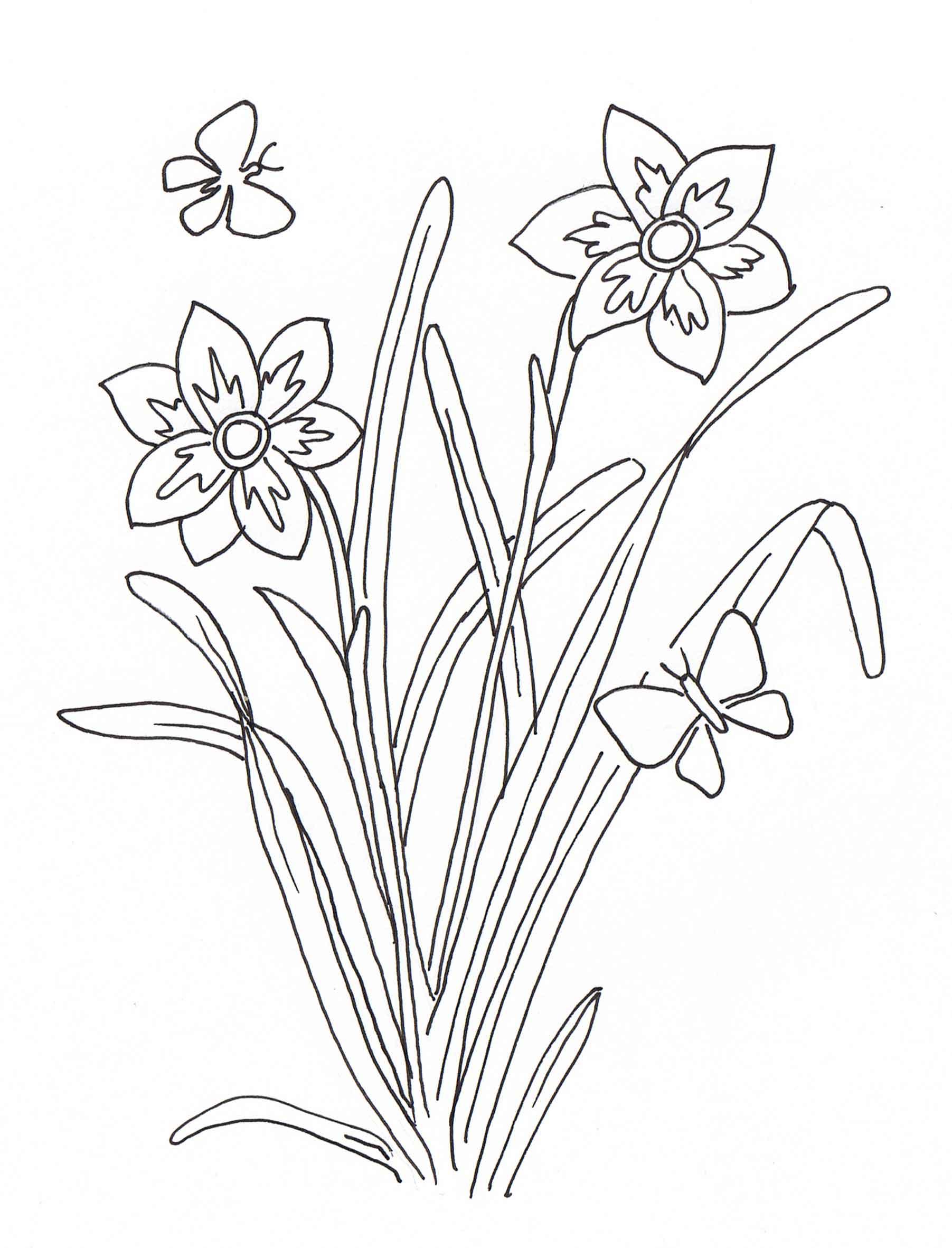 Coloriage a imprimer plante - Colorier dessin ...
