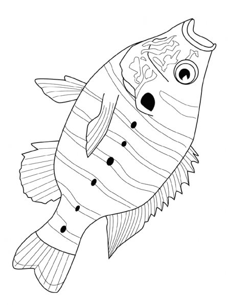 Dessin poisson d 39 avril 2013 - Coloriage avril ...