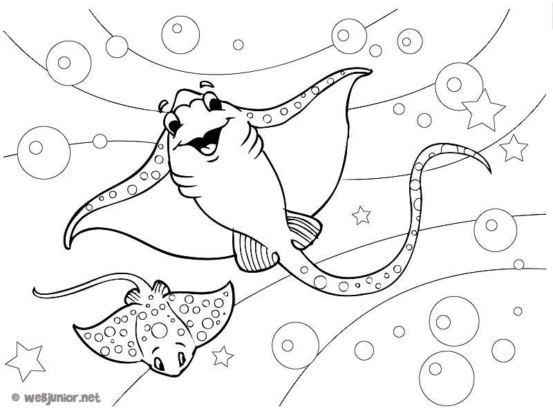 14 dessins de coloriage poisson raie imprimer - Dessin raie manta ...