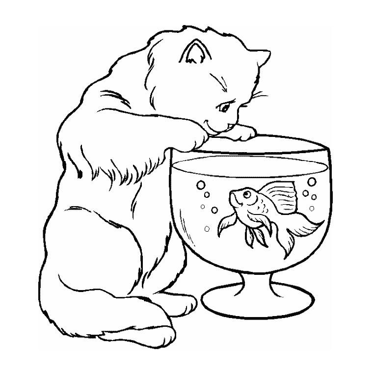 19 dessins de coloriage poisson rouge dans son bocal for Bocal de poisson rouge