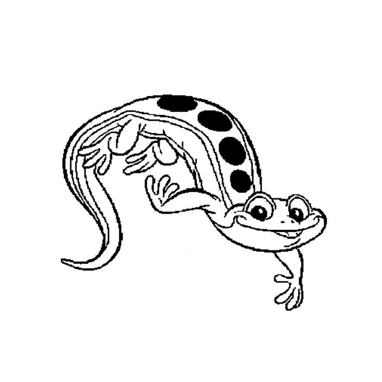 19 dessins de coloriage poisson rouge dans son bocal imprimer - Poisson rouge rigolo ...