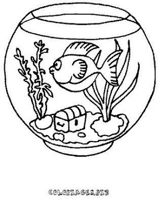 coloriage poisson rouge dans son bocal