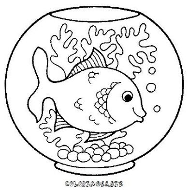 Coloriage dessiner les poissons rouges matisse for Aquarium poisson rouge dessin