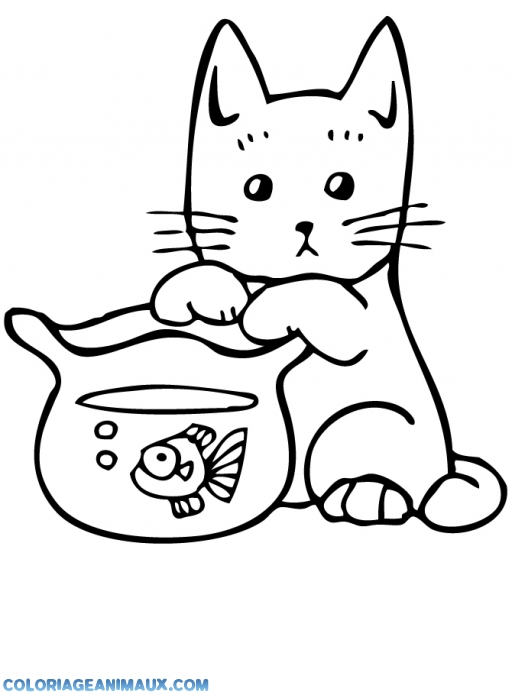 dessin poisson rouge dans son bocal