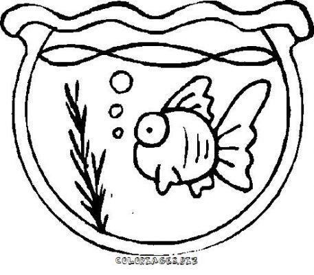Dessin poisson rouge en ligne - Coloriage poisson rouge ...