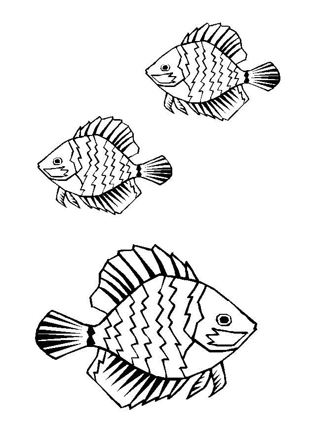 dessin poisson rouge imprimer