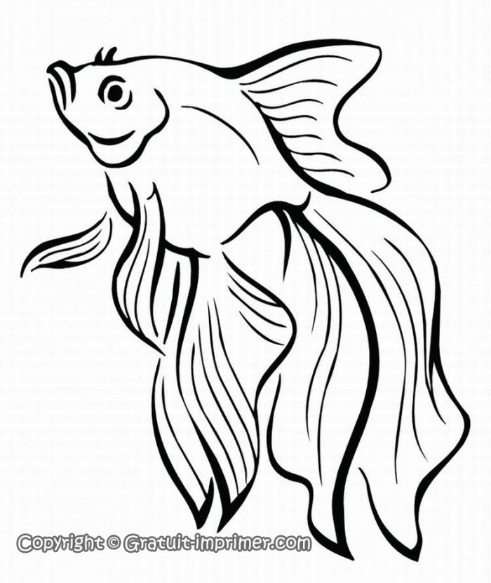 dessin imprimer poisson rouge