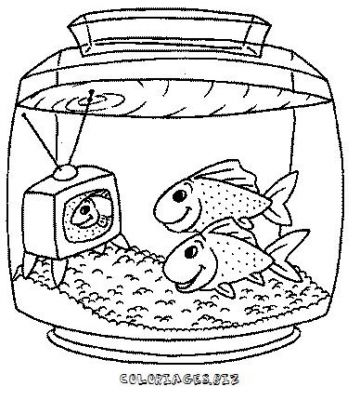 Coloriage de poisson rouge a imprimer for Aquarium poisson rouge dessin