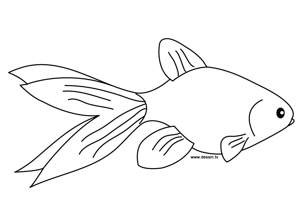 dessin à colorier de poisson rouge dans un bocal