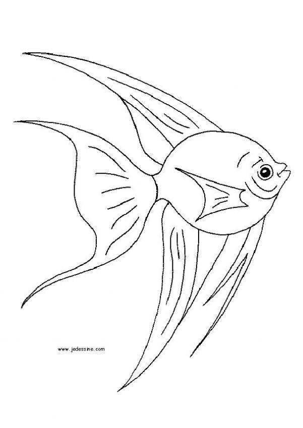 dessin d'un poisson d'avril