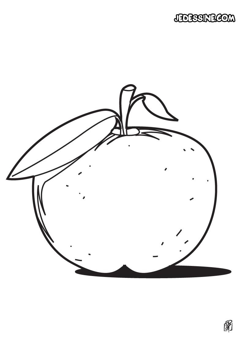 coloriage à dessiner pomme de pin