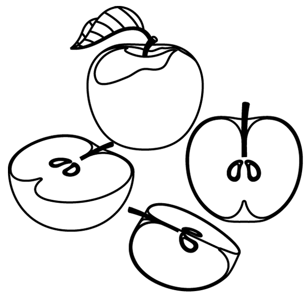 Dessin pomme a imprimer gratuit - Dessin d une pomme ...