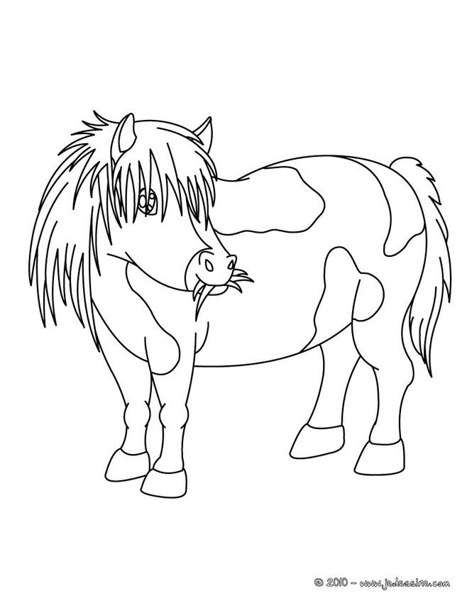 coloriage poney ville