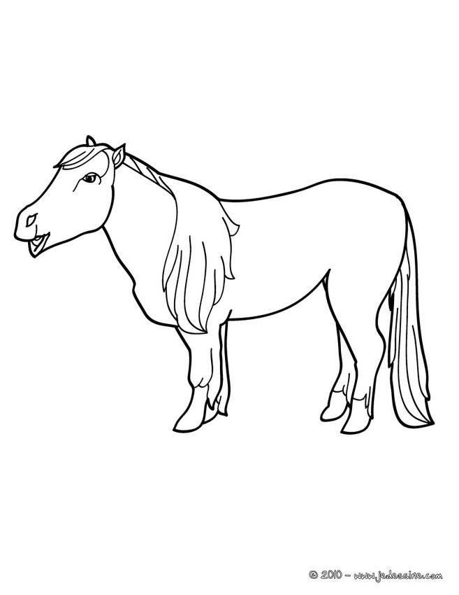 colorier un poney