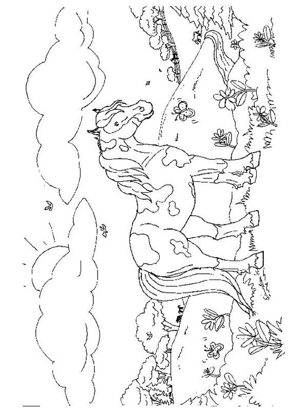 dessin poney sur ordinateur
