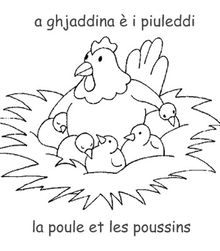 20 dessins de coloriage poule et poussin a imprimer imprimer - Dessin de poussin ...