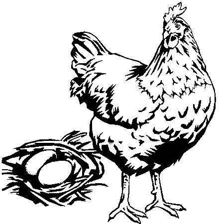 dessin à colorier poule rousse