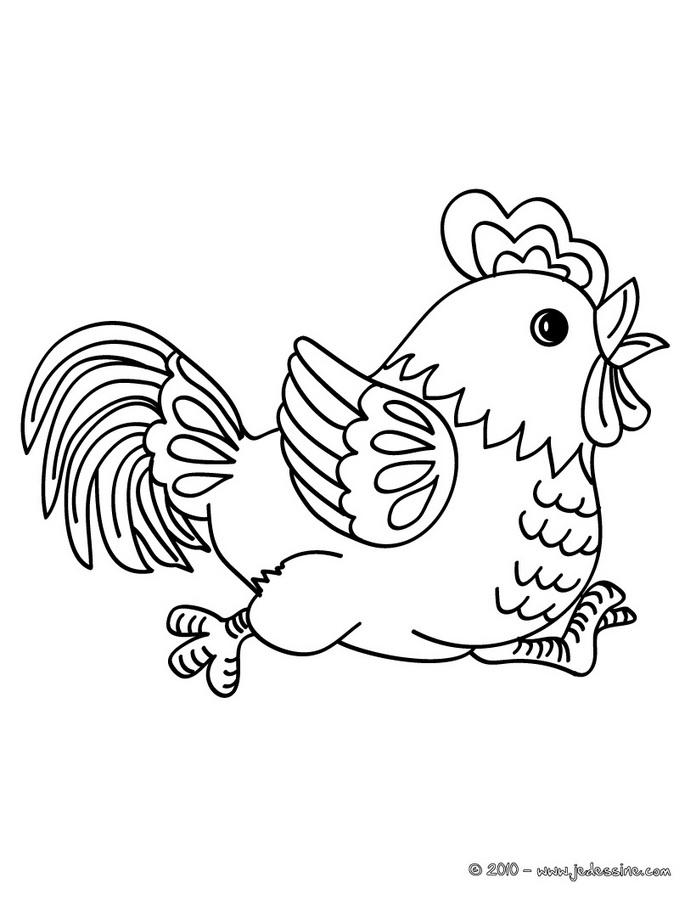 dessin poule qui couve