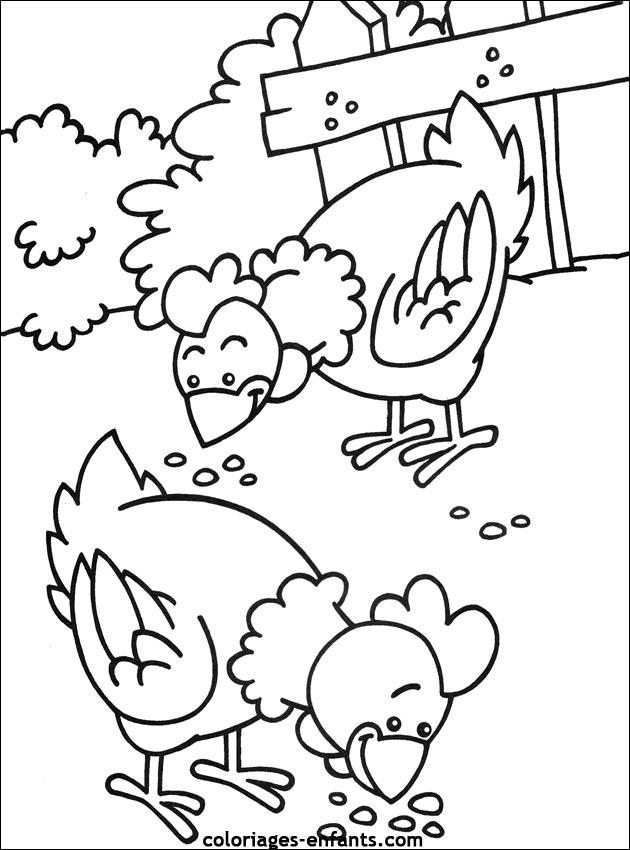 Coloriage dessiner poule et coq - Photos poules rigolotes ...