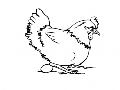 dessin à colorier paulette la poule