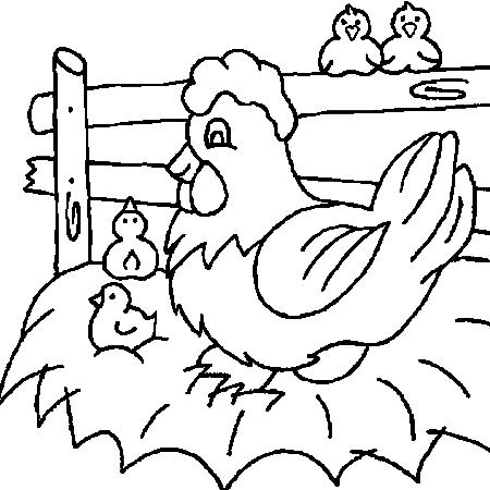 Dessin d 39 une poule et ses poussins - Coq a dessiner ...