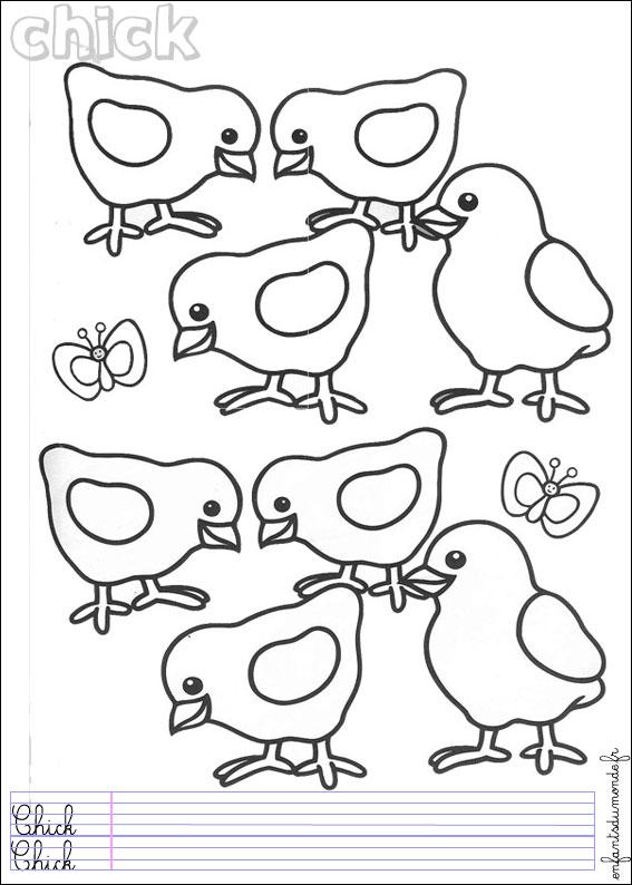 dessin à colorier poussin oeuf