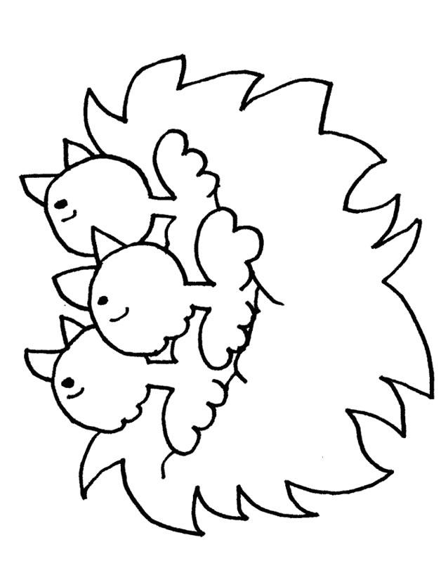 coloriage à dessiner les poussins